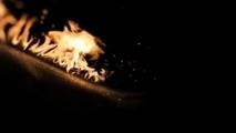"""""""Fire Flower """" de Pierre Michel"""