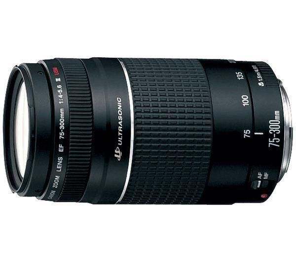 Canon Objectif EF 75-300 III F4-5,6 USM Prix : 270€