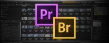 Adobe Première Pro CS6 : Utiliser Adobe Bridge Part 3
