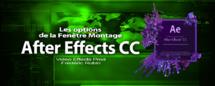 After Effects : Les options de la fenêtre Montage