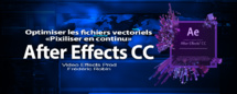 After Effects : Optimiser les fichiers vectoriels
