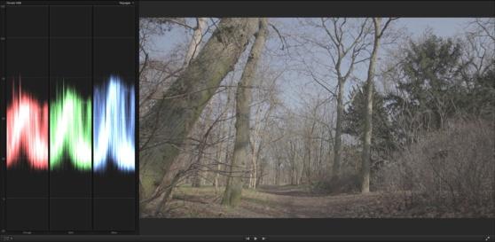 Image obtenue avec le style d'image Cinestyle de Technicolor.