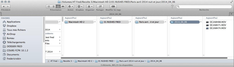 Résultat du rassemblement des fichiers avec Resolve Collect.