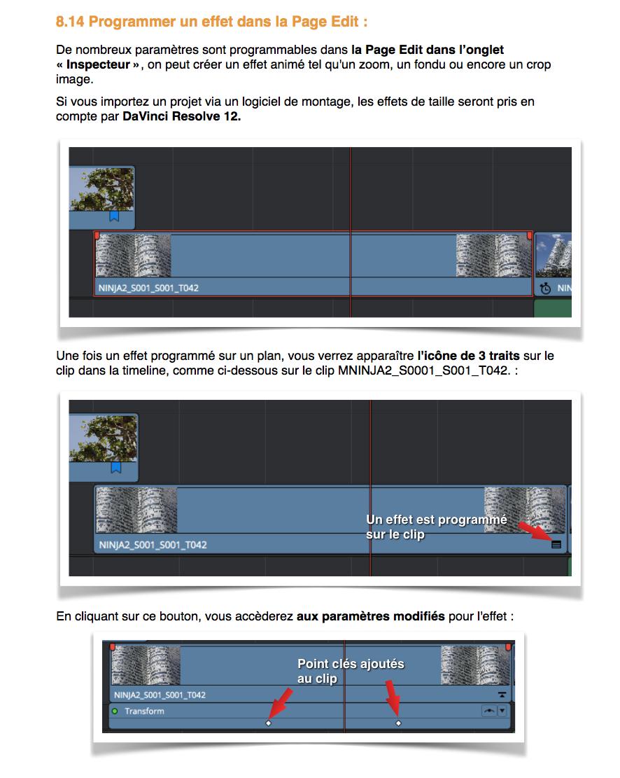 Gestion des effets sous DaVinci Resolve 12.5