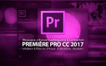 Première Pro CC 2017 : Les roues chromatiques Lumetri