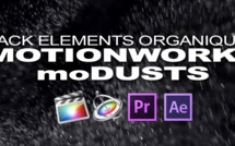 motionworks : moDUST 01 (Pack de poussières)