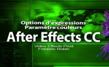 "After Effects : options d'expressions ""Le paramètre couleurs"""